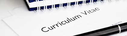 cv made professionally professional pilot curriculum vitae cv u0026 resume tailored for