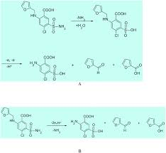 a new mechanistic approach to elucidate furosemide