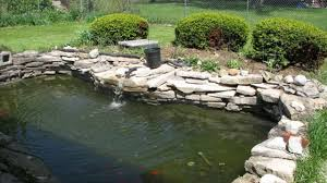 100 backyard pond care garden pond pumps the benefits of