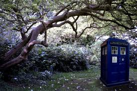 Forest Backdrop Tardis In Forest Backdrop Wallpaper Doctor Who By Mirmirs On