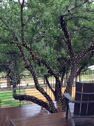 10 ways to amp up your outdoor space with string lights hgtv s