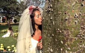 peruvian wedding dresses brides trees in mass wedding in peru