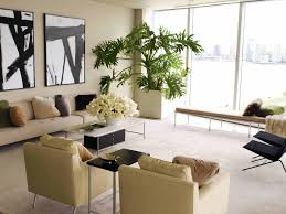 plants for living room home design ideas and pictures