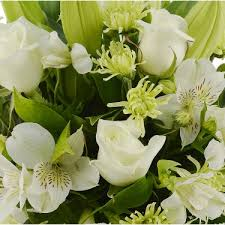 flower delivery today flowers to st kilda same day flower delivery melbourne 3182 vic