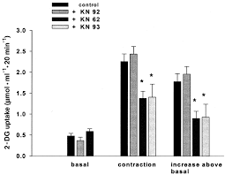 ca2 and ampk both mediate stimulation of glucose transport by