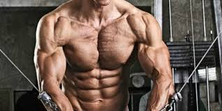 4 of the best for building a big chest therippedathlete com