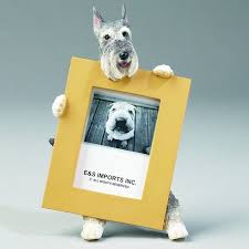 pug home decor schnauzer picture frame products pinterest products