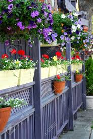 amazing flowers for patio home decor interior exterior creative at