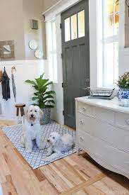 Mud Rugs For Dogs New Indoor Outdoor Rug In The Entry The Inspired Room