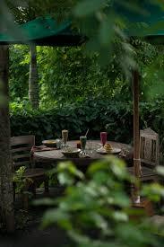 les 291 meilleures images du tableau bali food u0026 cafe sur