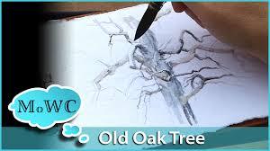 Oak Tree Drawing Painting An Old Oak Tree In My Watercolor Journal Youtube
