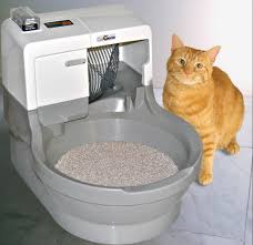 top 10 best cat litter boxes in 2017