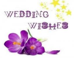 wedding wishes png congratulations caitlin and arno
