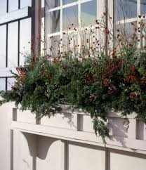 Outdoor Christmas Decorations For Windows by Windows Box Windows Decorating What A Beautiful Arrangement For