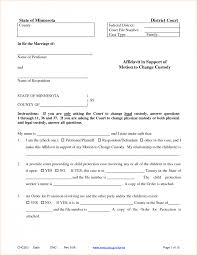 it support contract template with guardianship form and it