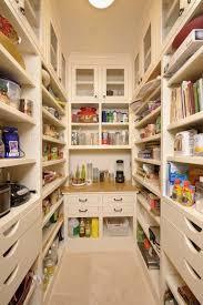 pantry ideas for kitchen best 25 kitchen pantry design ideas on kitchen