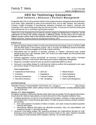 Sample Resume Business by Ceo Technology Resume Example