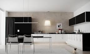 Black Kitchen Cabinets Design Ideas Kitchen Modern Interior Black And White Eiforces