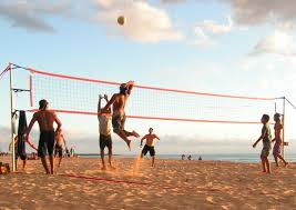 how do you find the best volleyball set sports unlimited blog