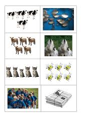 229 free countable uncountable nouns worksheets teach countable