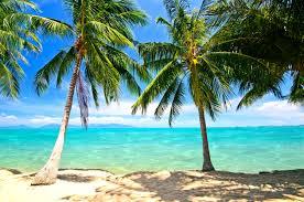 summer sea season tropical shore waves sky paradise