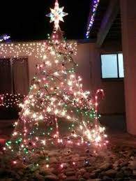 chicken wire lighted tree outdoor decoration