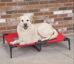 264 best dog beds and furniture images on pinterest
