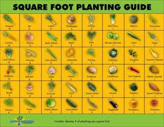 printable vegetable planner free printable garden planner sheets to get a copy of this guide