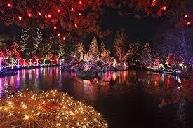 vancouver christmas light maze 75 christmas events around vancouver the province
