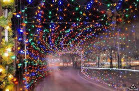 where to go see christmas lights the 24 best ways to see amazing christmas lights in orlando
