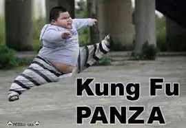 Meme Kung Fu - kung fu panza meme subido por martuxdongin memedroid