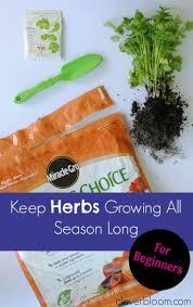 121 best gardening images on pinterest garden ideas herbs