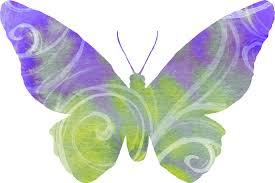 butterflies artsy bee digital images