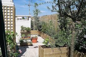 plantes dans une chambre comment decorer sa maison avec des plantes best of chambre enfant