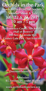 orchids for sale orchids in the park san francisco orchid society s summer show