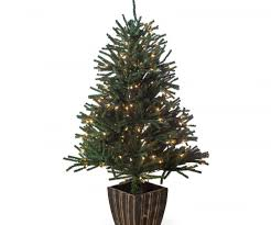 appealing frosted dover blue spruce slim artificial tree ft
