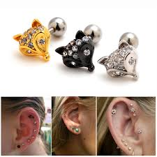 what is surgical steel earrings fox animal surgical steel barbell ear cartilage tragus