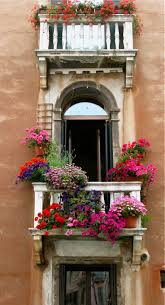 172 best windowsill boxes images on pinterest window boxes