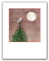 snowy owl cards 10 per boxed set woodland cards