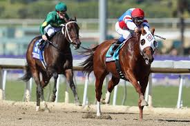 thanksgiving day races thanksgiving weekend stakes action part ii and down the