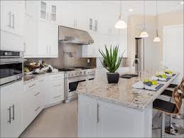 Modern Kitchen Cabinets For Sale Kitchen What Are Shaker Cabinets Buy Kitchen Cabinet Doors