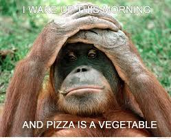 Chimp Meme - pizza is a vegetable chimp crazy cuteness pinterest