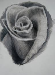 rose black and white by hausofch on clipart library clip art library
