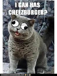 Googly Eyes Meme - new lol builder feature googly eyes cheezburger company blog