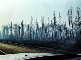 Alberta Wildfire System by Entire City Flees Raging Wildfire In Canada Nbc News