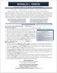 chef resume objective examples sales and marketing sample resume inspiration decoration sales marketing resume sample head chef resume chef resume objective marketing resume sample resume genius