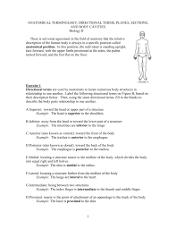 terminology of anatomy choice image learn human anatomy image