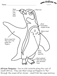 penguin facts coloring book page