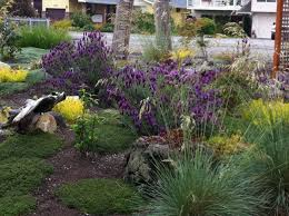Home Landscaping Design Online Beach House Landscaping Ideas On 576x366 Landscape Design