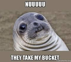 Meme Bucket - bucket seal meme seal best of the funny meme